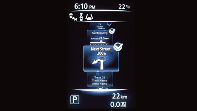 Navigation party of advance drive assist display