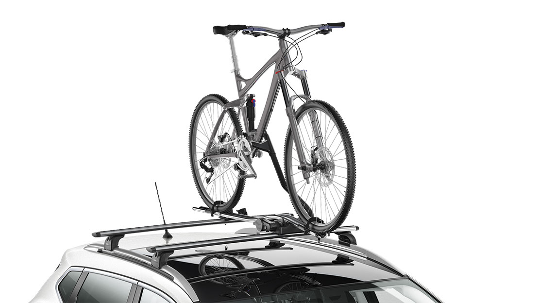 Luxury bike carrier